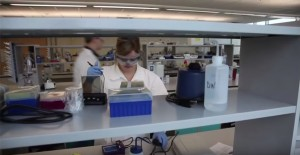 McMaster Biotechnology